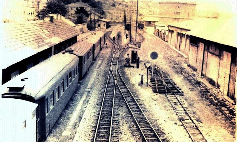 Uskotračna pruga Dubrovnik-Čapljina te ostale u BiH Scan0059