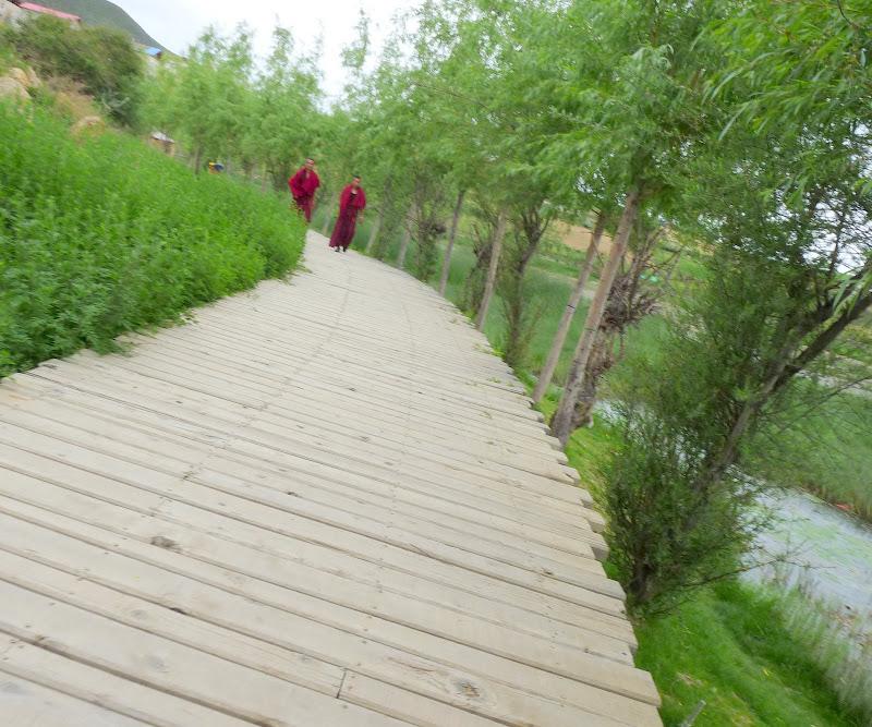 Chine.Yunnan. Ganten Sumtsenling Monastery, Shangri la - P1260106.JPG
