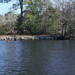 Fowl Marsh from Boat Feb3 2013 123