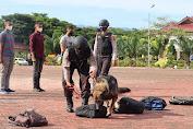 Atraksi Anjing Pelacak K-9 di Lapangan Polda Aceh, Disaksikan Kapolda Aceh