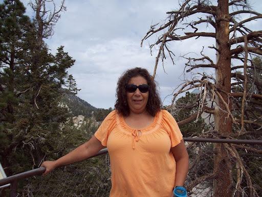 Linda Quiroz Photo 15