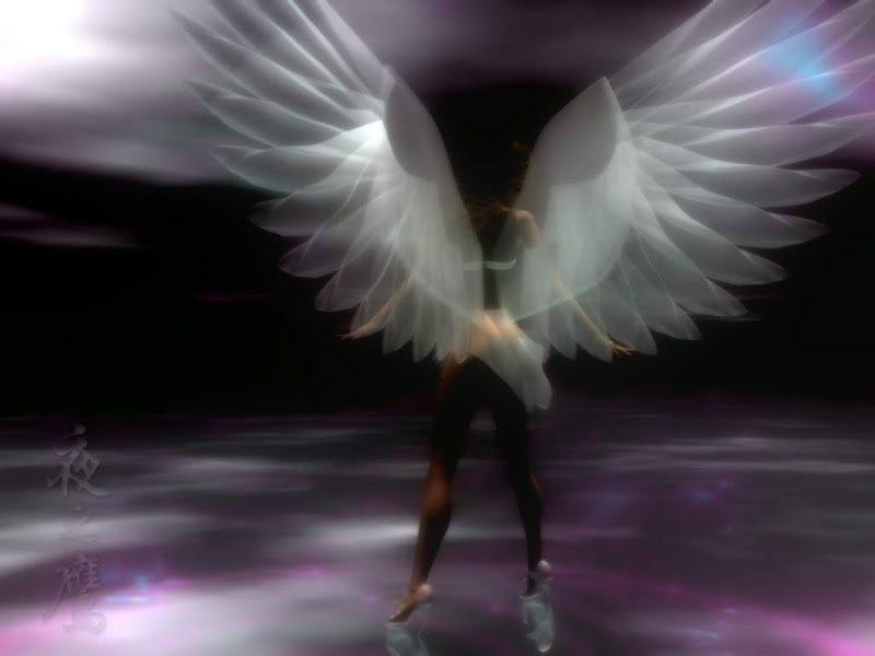 Innocent Angel Of Nature, Angels 5