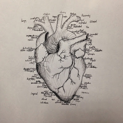 97 hearts anatomical heart