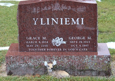 George and Grace Yliniemi