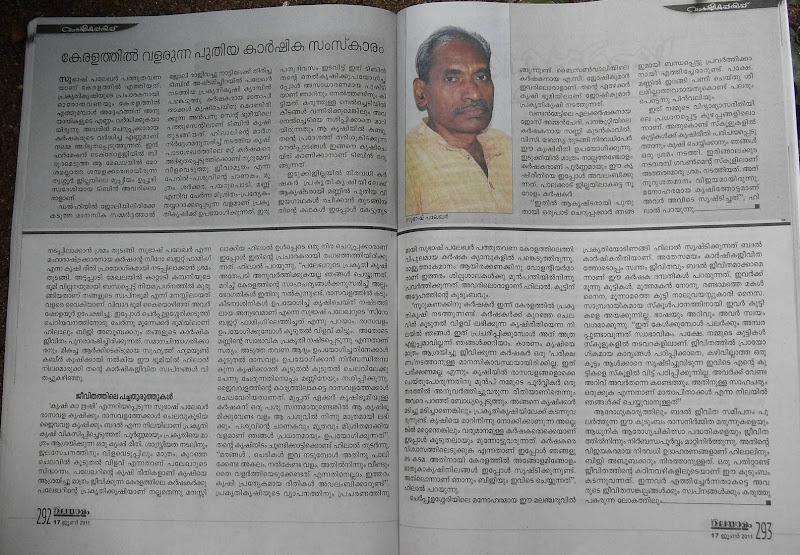 Kerala Palekar KM.Hilal's story in Malayalam varika page 2