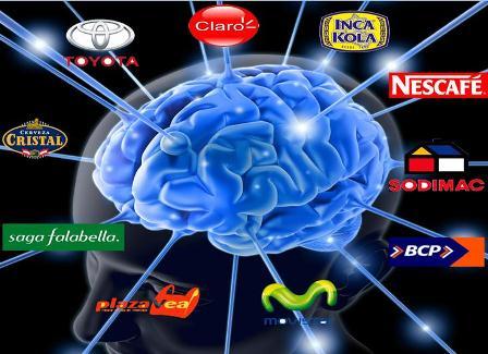 Neurosegmentación