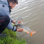 20160723_Fishing_Grushvytsia_030.jpg