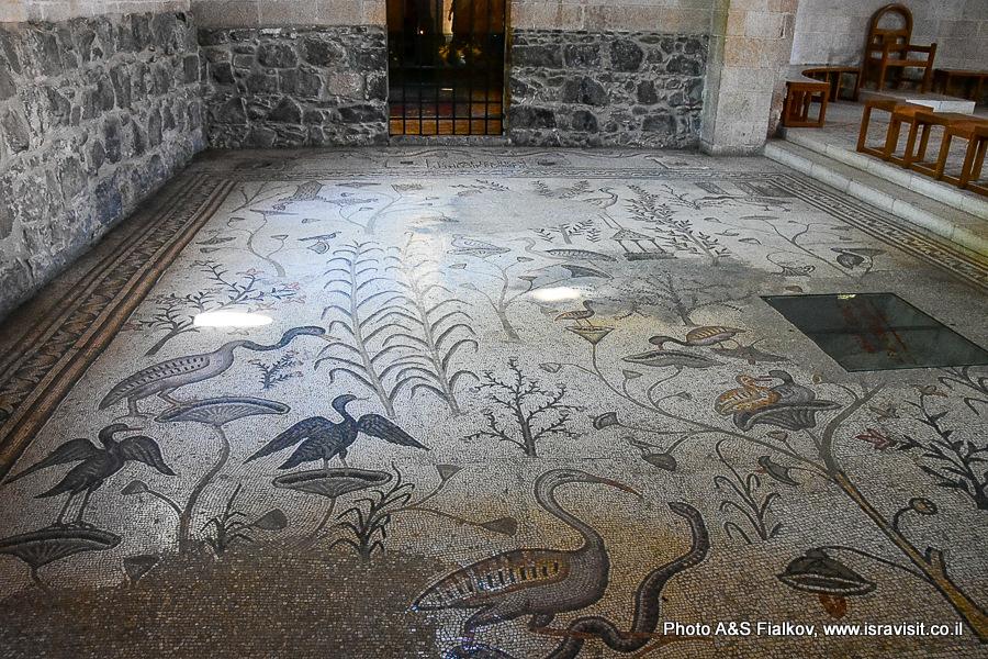 Старинная мозаика церкви умножения хлебов и рыб в Табхе. Экскурсовод Светлана Фиалкова.