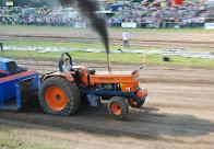 Zondag 22--07-2012 (Tractorpulling) (307).JPG