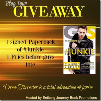 blog tour Junkie