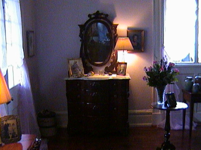 1340A_Southern_Mansion_Garden_-_New_Orleans