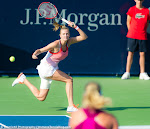 Petra Kvitova - 2016 Dubai Duty Free Tennis Championships -DSC_3794.jpg