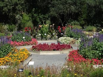 2018.08.21-022 jardin botanique