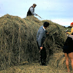 1962.06 Haymaking at Bosigran (2).JPG