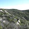 san-juan-trail-IMG_0259.jpg