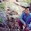 Emmanuel Nunez's profile photo