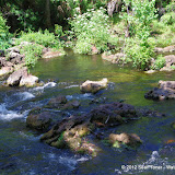 04-04-12 Hillsborough River State Park - IMGP9697.JPG