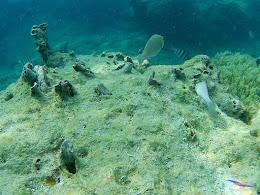 pulau pari 050516 GoPro 62