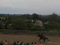 Minden lovas győzni szeretne.jpg