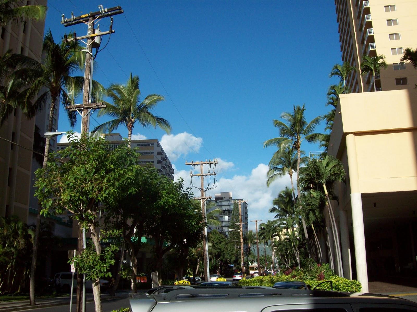 Hawaii Day 3 - 114_1135.JPG