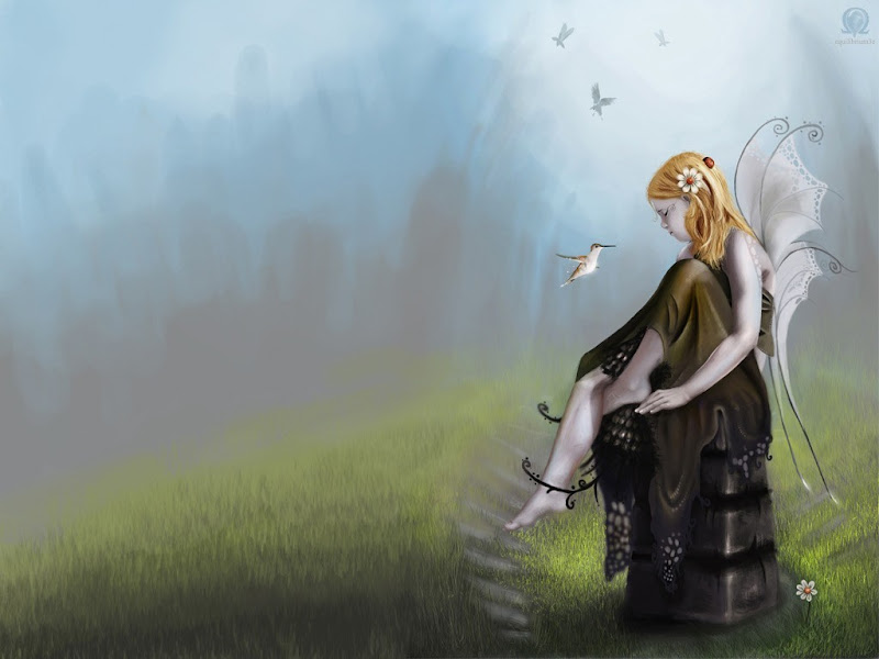 Wizdom Of Good Fairy, Fairies Girls 2