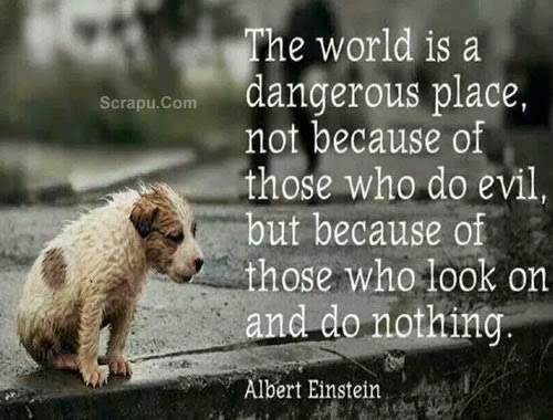 The world is a dangerous place because people ignore evil image