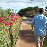 Hawaii Day 6 - 114_1744.JPG