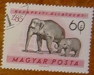 timbre Hongrie 002
