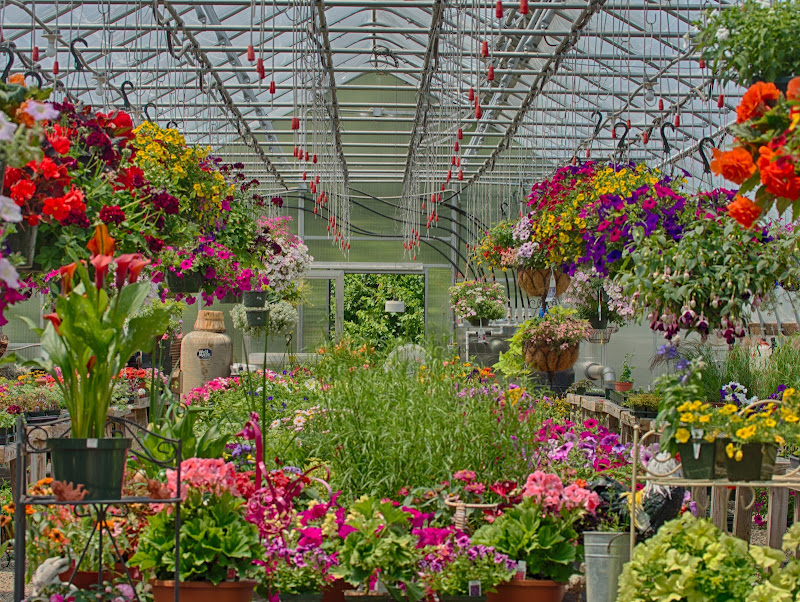 Mason Brook Nursery