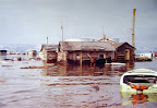 A photo of the Dawg's soggy plight immediately following the Good Friday earthquake of 1964.