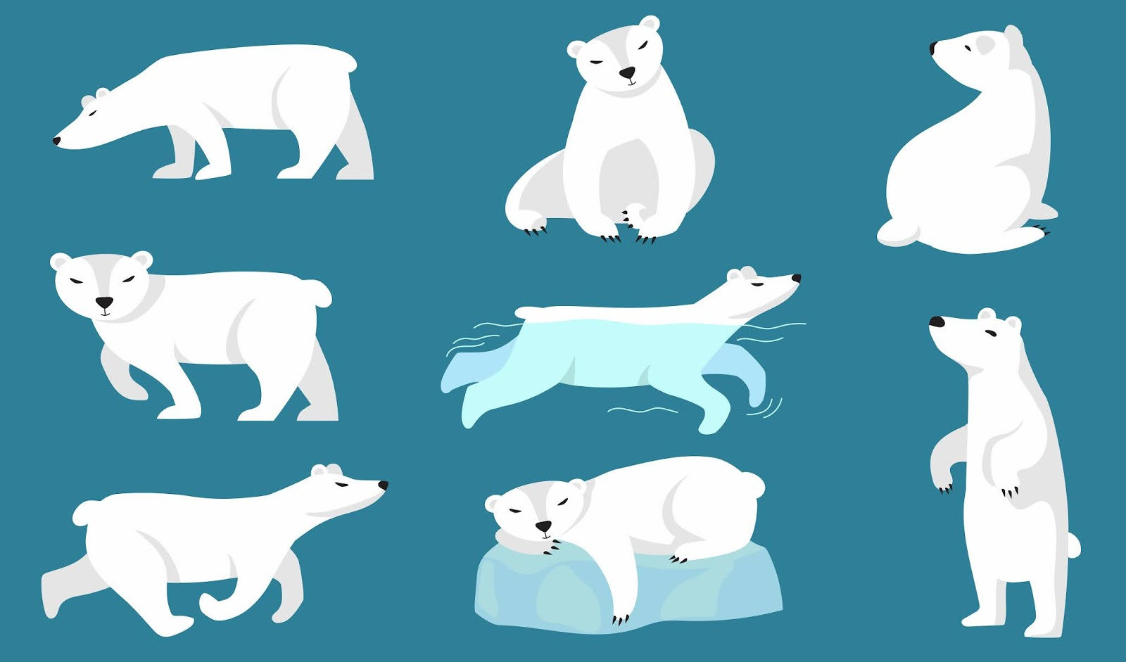 Polar Bear Set Free Download Vector CDR, AI, EPS and PNG Formats
