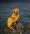 Blonde baby zeehond