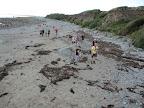 Der Strand bei Ynisgain