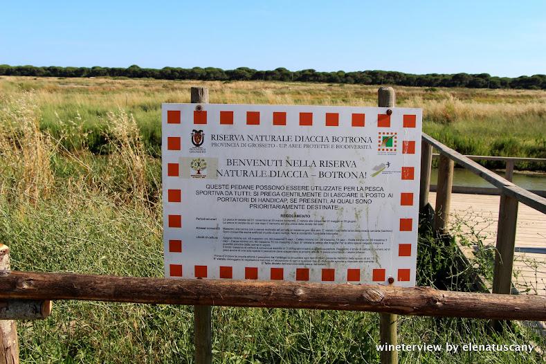 riserva naturale diaccia botrona, maremma, castiglione della pescaia