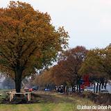 Verplaatsen bomen langs N366 - Foto's Johan de Groot
