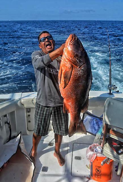 san jose del cabo single guys Secrets puerto los cabos - san jose del cabo, mexico - set in the exclusive community of puerto los cabos, secrets puerto los cabos.