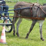 villotran concours âne