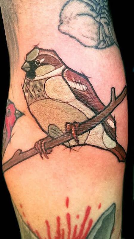 pardal_tatuagens
