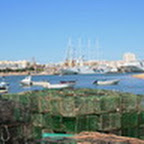 tn_portugal2010_027.jpg