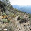 maple_springs_silverado_motorway_img_2265.jpg