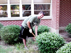 Photo: Removing Weeds