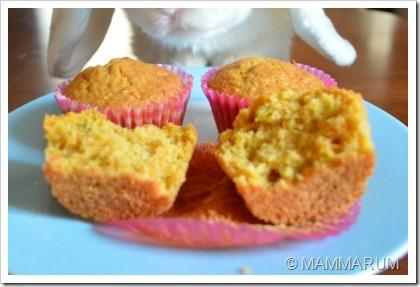 muffin carote 1