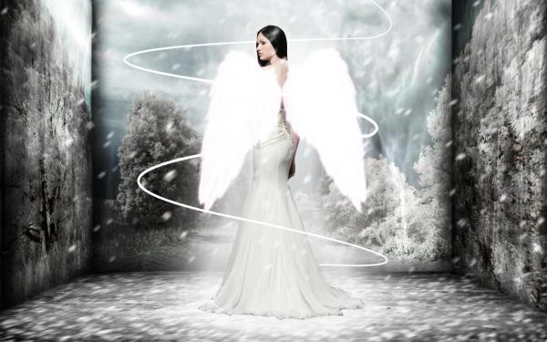Handsome Angel Of Light, Angels 4