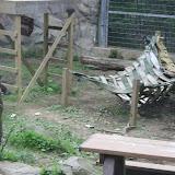 Zoo Snooze 2015 - IMG_7178.JPG