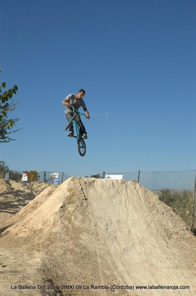 Ballena Dirt Jump BMX 2009 - BMX_09_0029.jpg