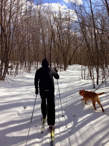 Great March skiing on Roy's Run Sunday afternoon