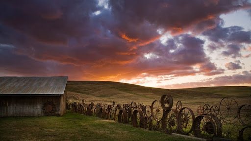 Dahmen Barn and 1000 Antique Wheel Fence, Uniontown, Washington.jpg