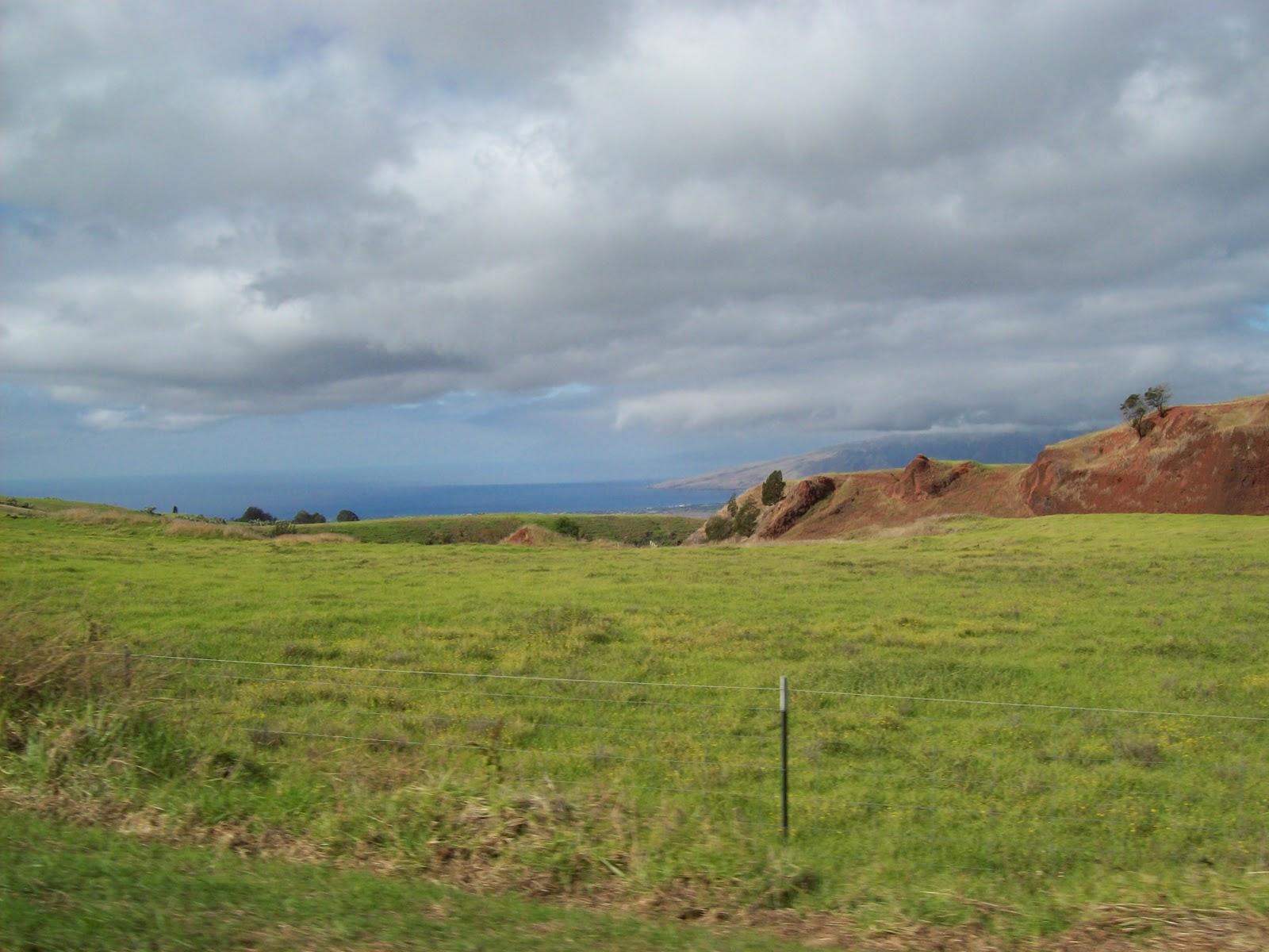 Hawaii Day 8 - 100_7998.JPG