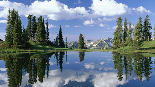 Alpine Tarn, Gunnison National Forest, Rocky Mountains, Colorado.jpg