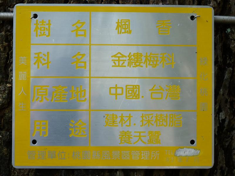 TAIWAN Chia yi, Taichung et quelque part ? au  au sud de Taipei - P1000363.JPG
